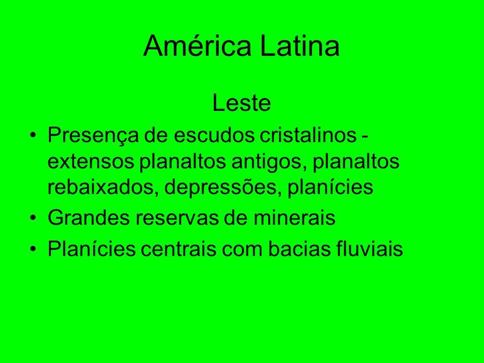 América Latina Leste Presença de escudos cristalinos - extensos planaltos antigos, planaltos rebaixados, depressões, planícies Grandes reservas de minerais Planícies centrais com bacias fluviais