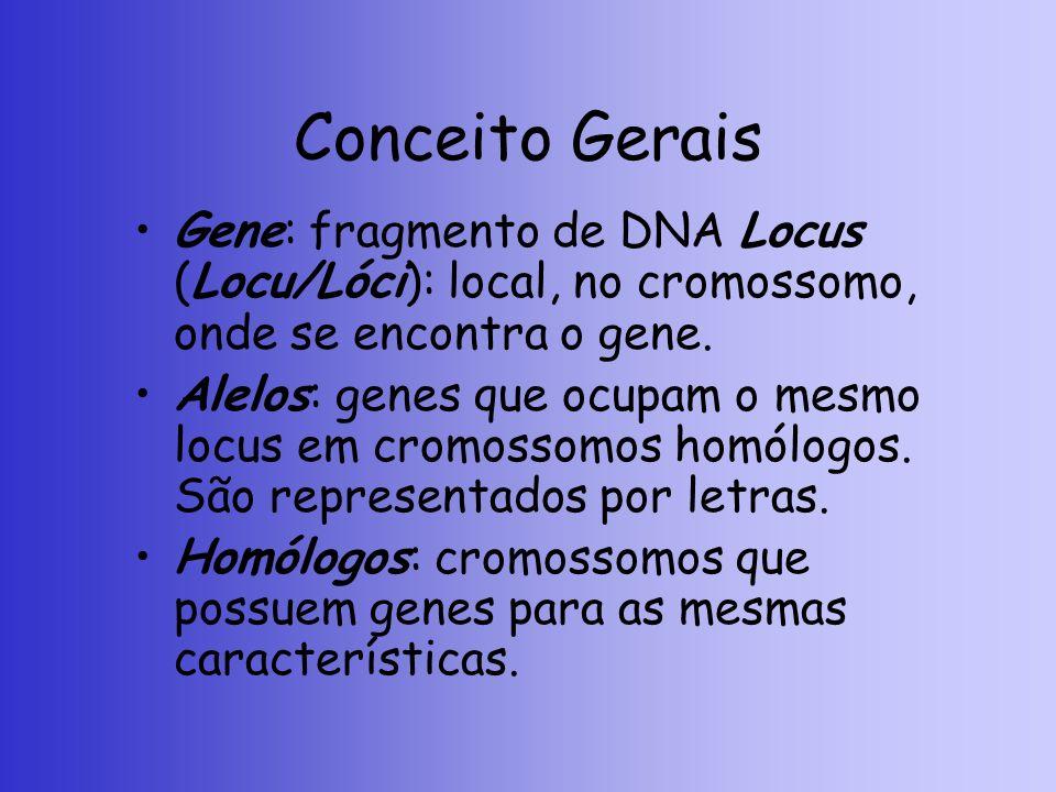Conceito Gerais Gene: fragmento de DNA Locus (Locu/Lóci): local, no cromossomo, onde se encontra o gene. Alelos: genes que ocupam o mesmo locus em cro