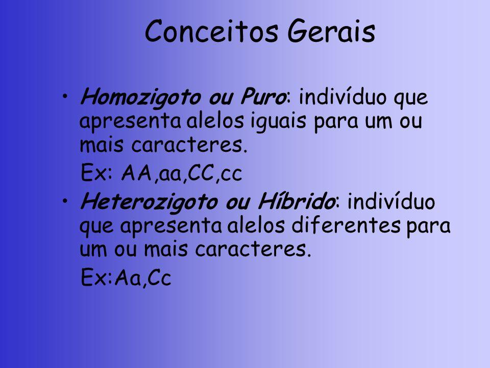 Conceitos Gerais Homozigoto ou Puro: indivíduo que apresenta alelos iguais para um ou mais caracteres. Ex: AA,aa,CC,cc Heterozigoto ou Híbrido: indiví