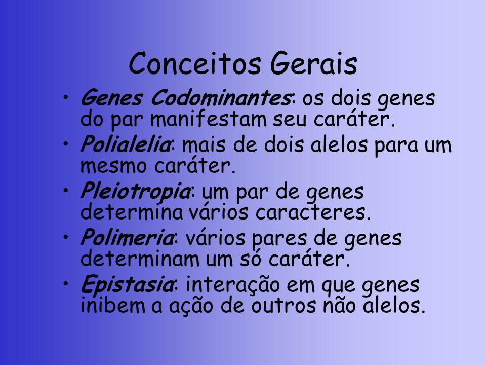 Conceitos Gerais Genes Codominantes: os dois genes do par manifestam seu caráter. Polialelia: mais de dois alelos para um mesmo caráter. Pleiotropia: