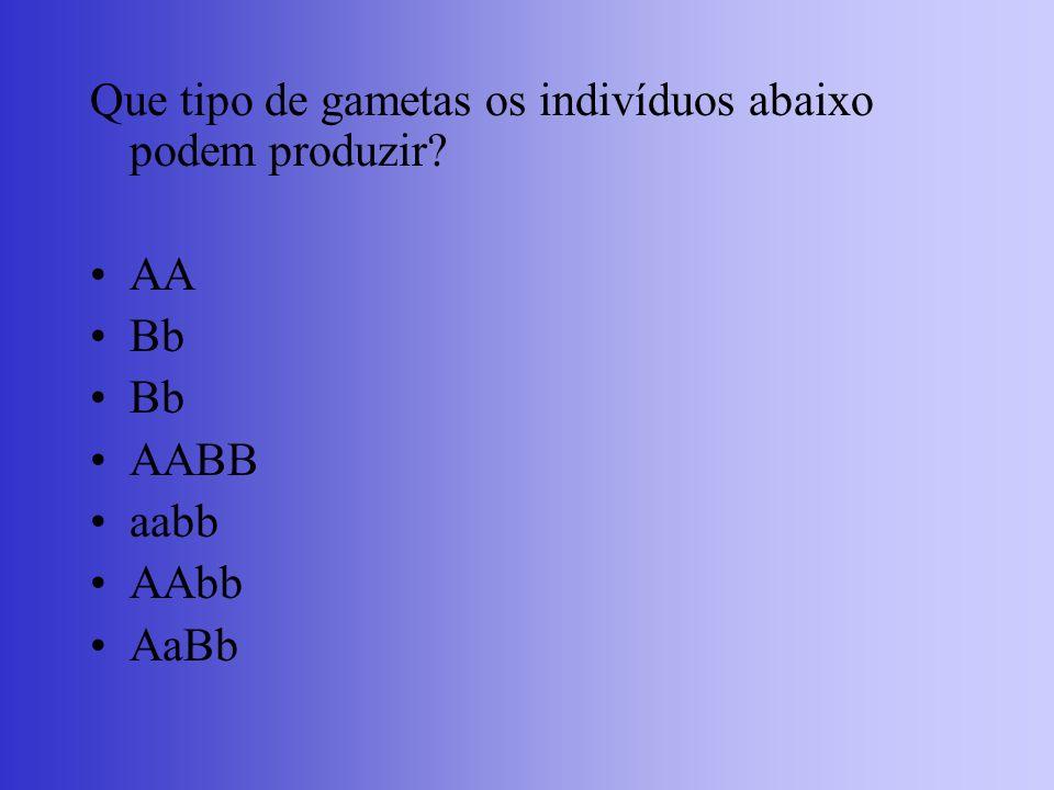 Que tipo de gametas os indivíduos abaixo podem produzir? AA Bb AABB aabb AAbb AaBb