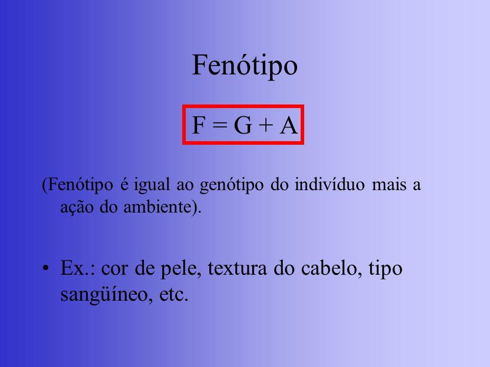 Fenótipo F = G + A (Fenótipo é igual ao genótipo do indivíduo mais a ação do ambiente). Ex.: cor de pele, textura do cabelo, tipo sangüíneo, etc.