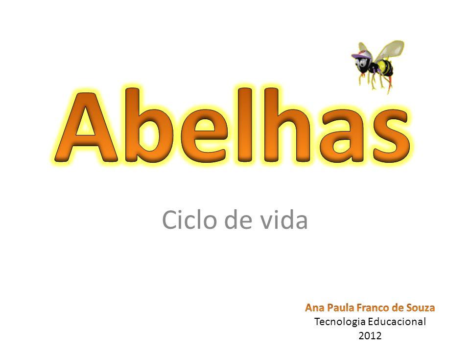 REINO- Animal FILO- Arthropoda CLASSE- Insecta ORDEM- Hymenoptera SUBORDEM- Apocrita SUPERFAMÍLIA- Apoidea NOME CIENTÍFICO: Apis mellifera NOME COMUM: Abelha NOME EM INGLÊS: Bee
