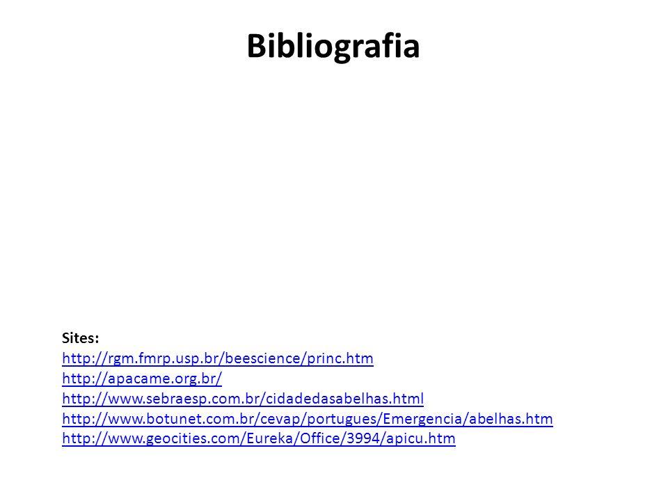 Sites: http://rgm.fmrp.usp.br/beescience/princ.htm http://apacame.org.br/ http://www.sebraesp.com.br/cidadedasabelhas.html http://www.botunet.com.br/c