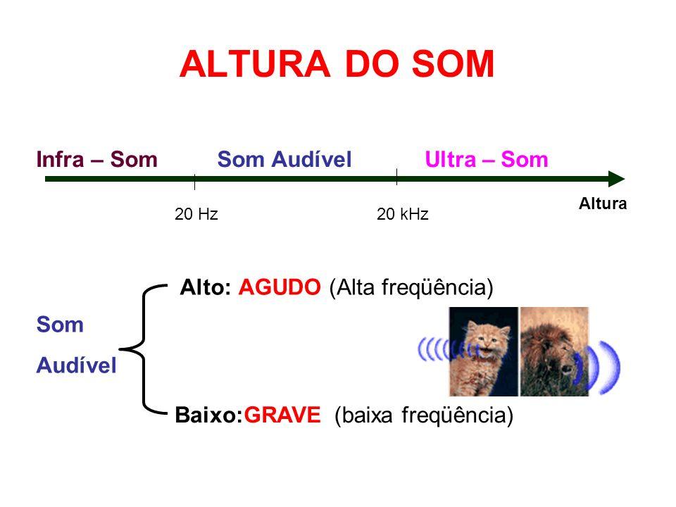 ALTURA DO SOM 20 Hz20 kHz Som AudívelInfra – SomUltra – Som Altura Som Audível Alto: Baixo: AGUDO GRAVE (Alta freqüência) (baixa freqüência)