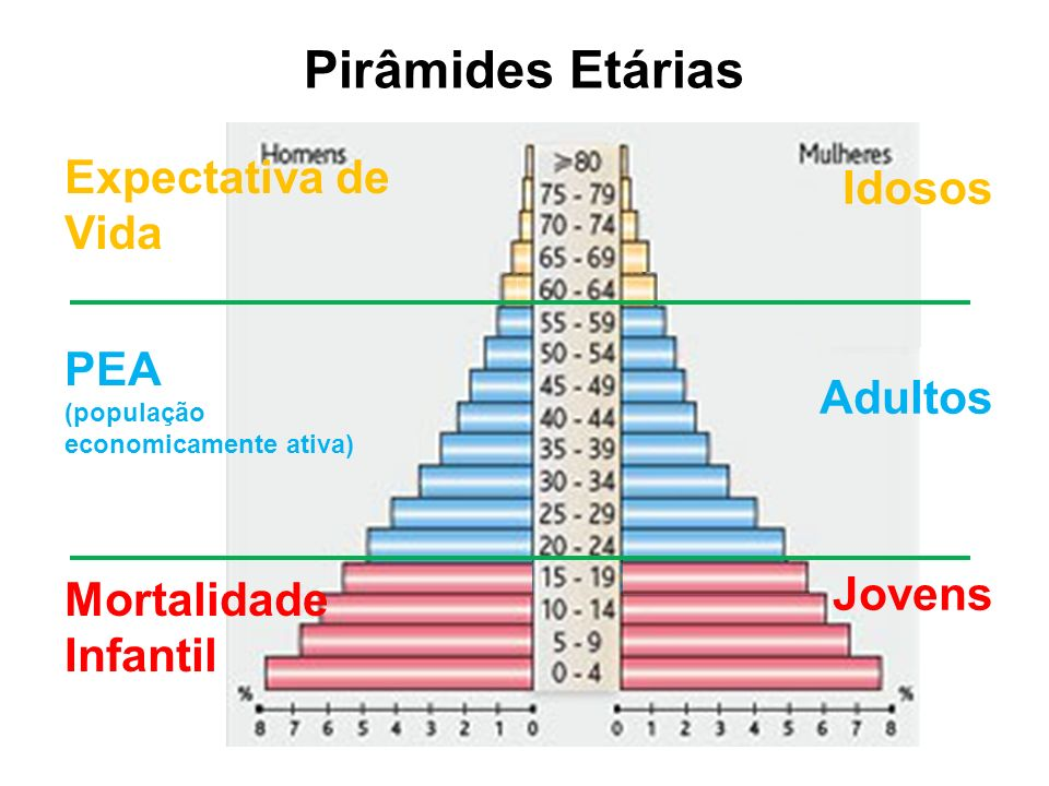 Pirâmides Etárias Idosos Adultos Jovens Expectativa de Vida PEA (população economicamente ativa) Mortalidade Infantil