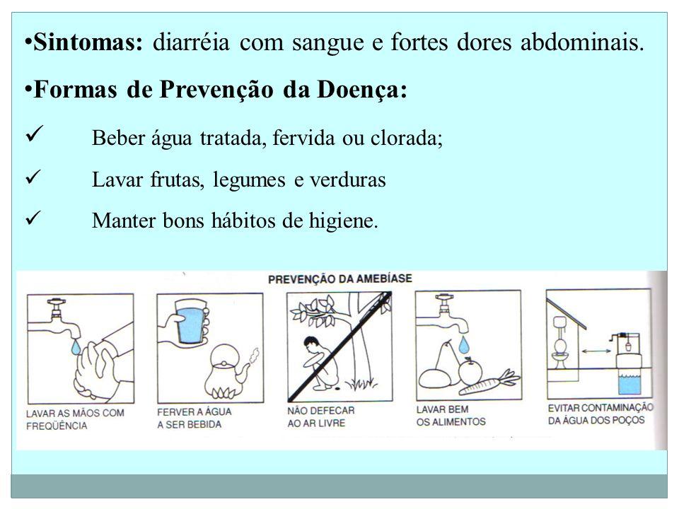 Sintomas: diarréia com sangue e fortes dores abdominais. Formas de Prevenção da Doença: Beber água tratada, fervida ou clorada; Lavar frutas, legumes