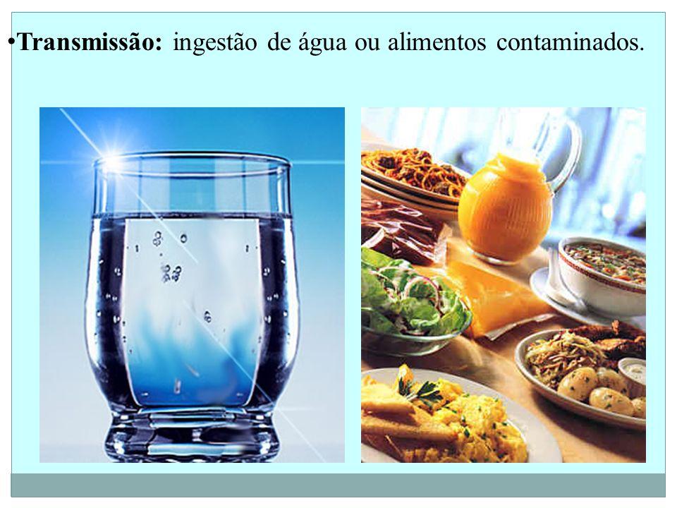 Transmissão: ingestão de água ou alimentos contaminados.