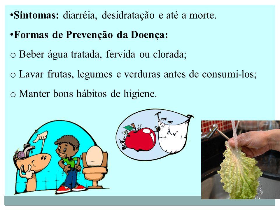 Sintomas: diarréia, desidratação e até a morte. Formas de Prevenção da Doença: o Beber água tratada, fervida ou clorada; o Lavar frutas, legumes e ver