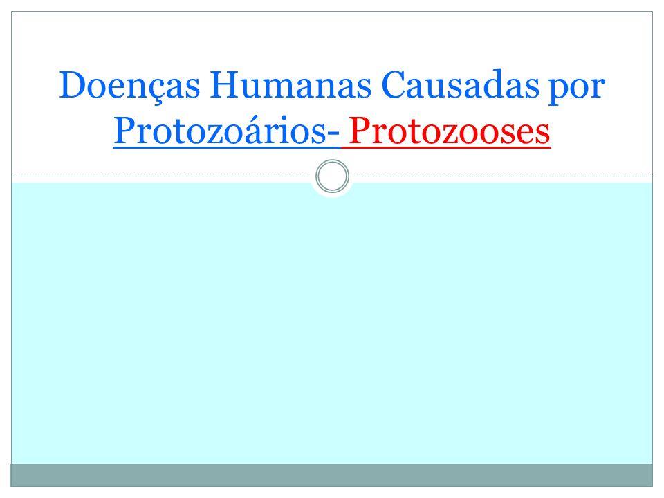 Doenças Humanas Causadas por Protozoários- Protozooses
