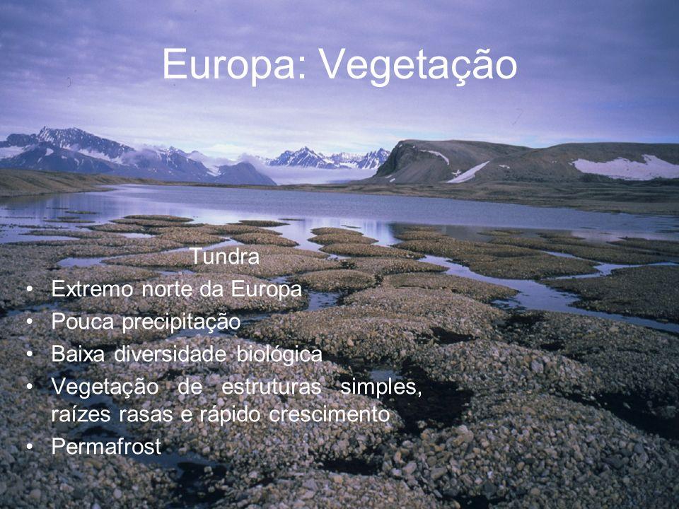 Europa: Vegetação Tundra Extremo norte da Europa Pouca precipitação Baixa diversidade biológica Vegetação de estruturas simples, raízes rasas e rápido