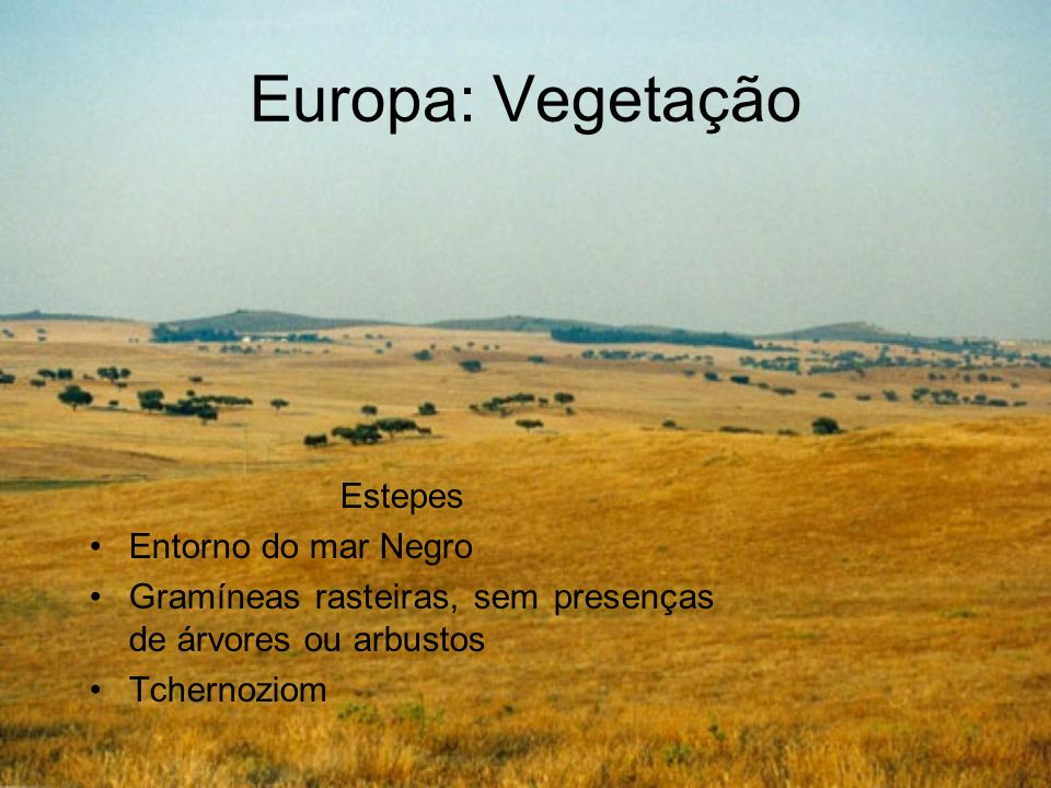 Europa: Vegetação Vegetação Mediterrânea De Portugal até a Turquia Condicionadas pelas altitudes – nas baixas são arbustos e nas altas apresentam árvores de maior porte Bastante removida para produção de olivas e vinhedos