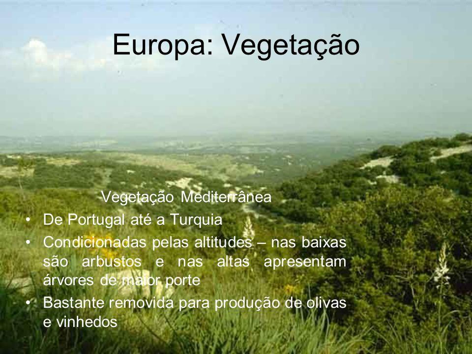 Europa: Vegetação Vegetação Mediterrânea De Portugal até a Turquia Condicionadas pelas altitudes – nas baixas são arbustos e nas altas apresentam árvo