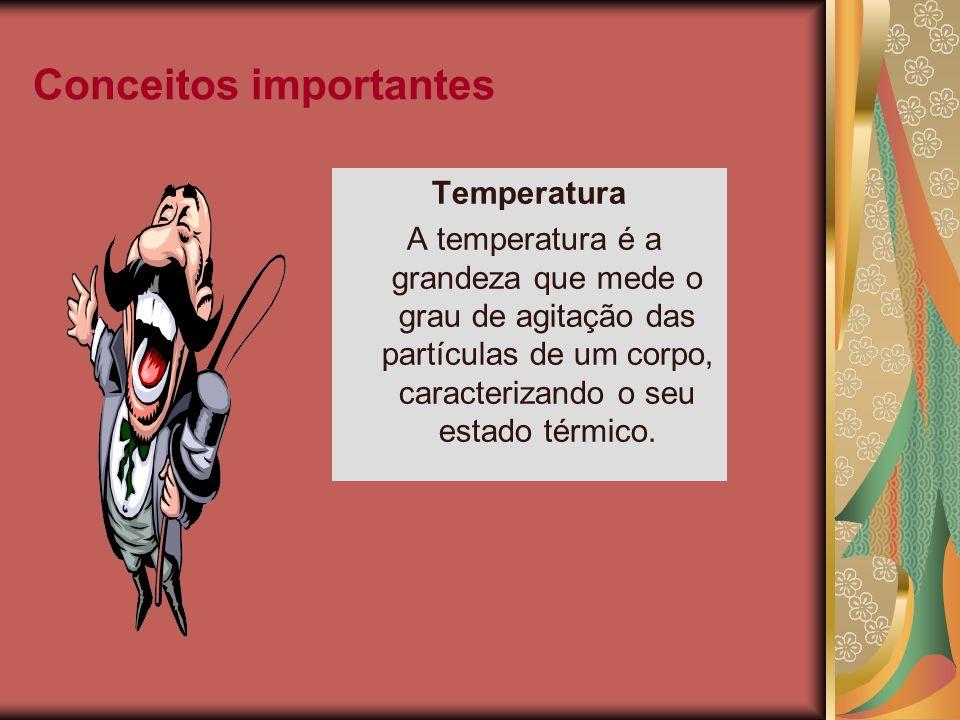 Conceitos importantes Temperatura A temperatura é a grandeza que mede o grau de agitação das partículas de um corpo, caracterizando o seu estado térmi
