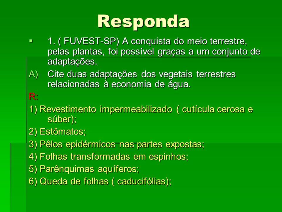 Responda 1. ( FUVEST-SP) A conquista do meio terrestre, pelas plantas, foi possível graças a um conjunto de adaptações. 1. ( FUVEST-SP) A conquista do