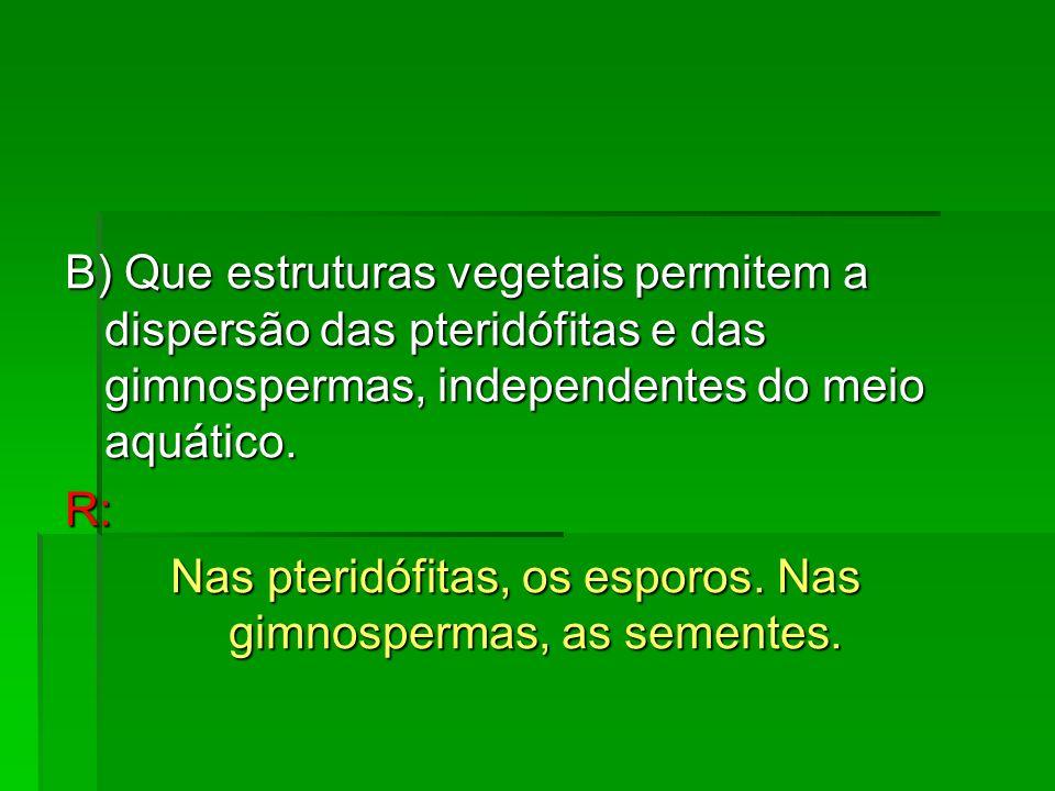 B) Que estruturas vegetais permitem a dispersão das pteridófitas e das gimnospermas, independentes do meio aquático. R: Nas pteridófitas, os esporos.