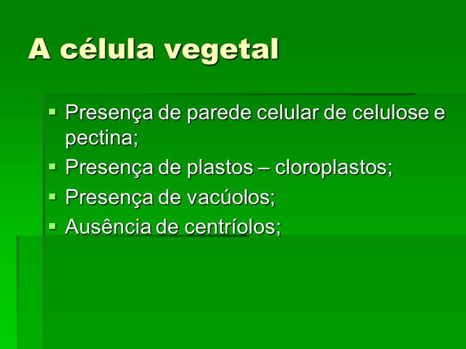 A célula vegetal Presença de parede celular de celulose e pectina; Presença de parede celular de celulose e pectina; Presença de plastos – cloroplasto