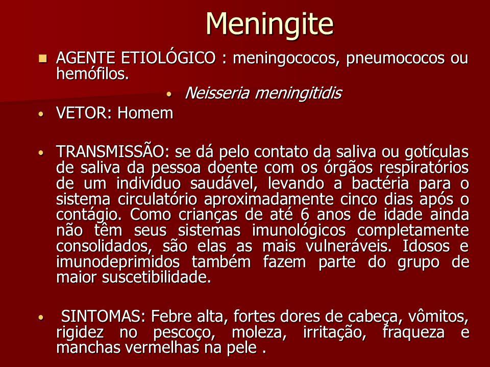 Meningite AGENTE ETIOLÓGICO : meningococos, pneumococos ou hemófilos.