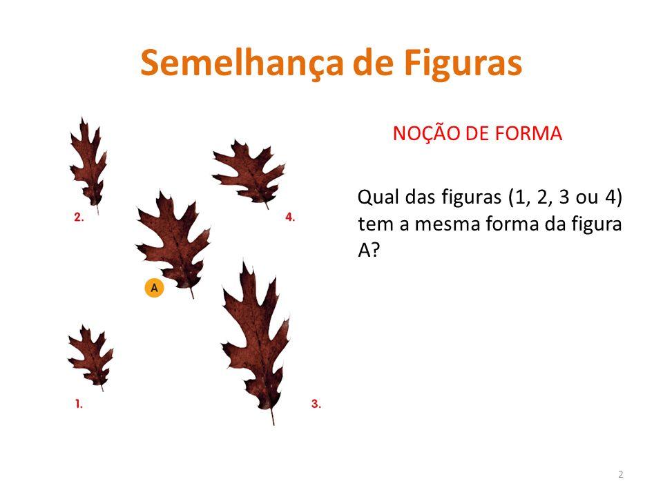 Semelhança de Figuras NOÇÃO DE FORMA Qual das figuras (1, 2, 3 ou 4) tem a mesma forma da figura A? 2