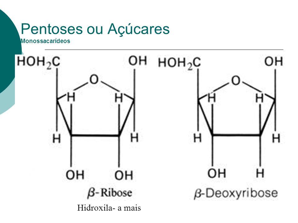 Pentoses ou Açúcares Monossacarídeos Hidroxila- a mais