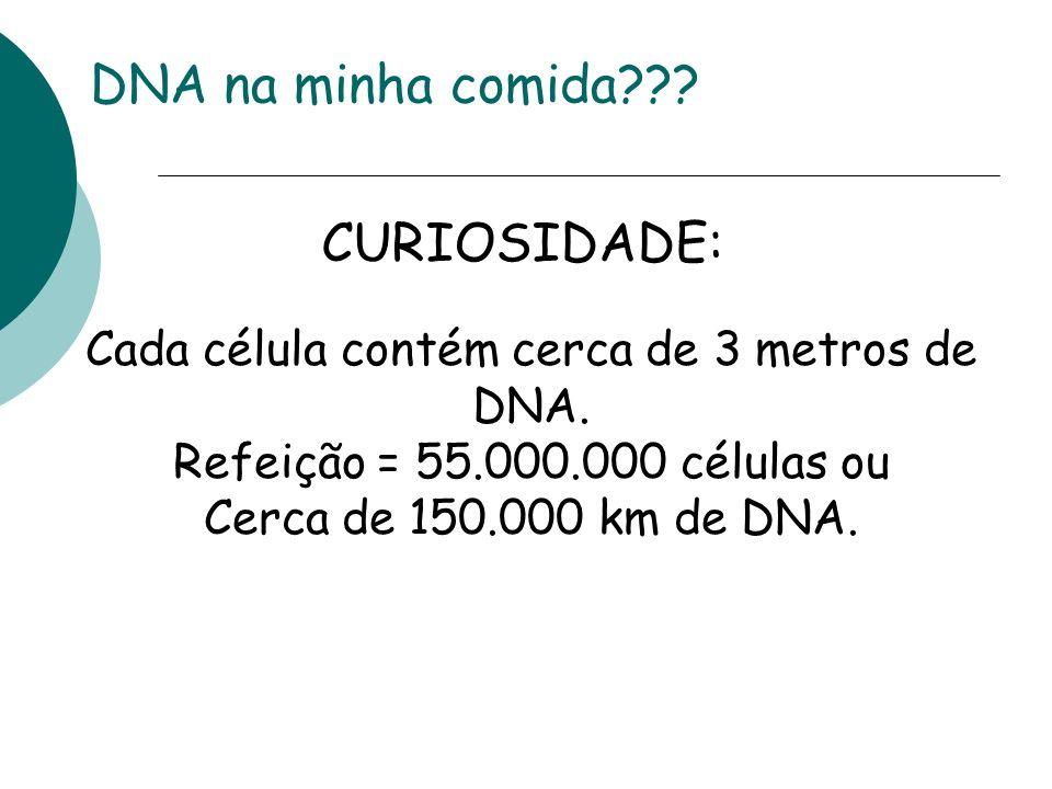 DNA na minha comida??? CURIOSIDADE: Cada célula contém cerca de 3 metros de DNA. Refeição = 55.000.000 células ou Cerca de 150.000 km de DNA.