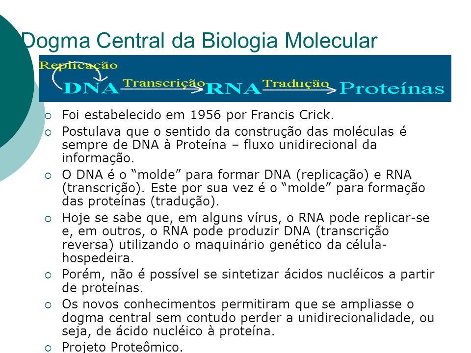 Dogma Central da Biologia Molecular Foi estabelecido em 1956 por Francis Crick. Postulava que o sentido da construção das moléculas é sempre de DNA à