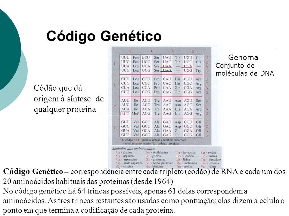Código Genético Códão que dá origem à síntese de qualquer proteína Código Genético – correspondência entre cada tripleto (códão) de RNA e cada um dos