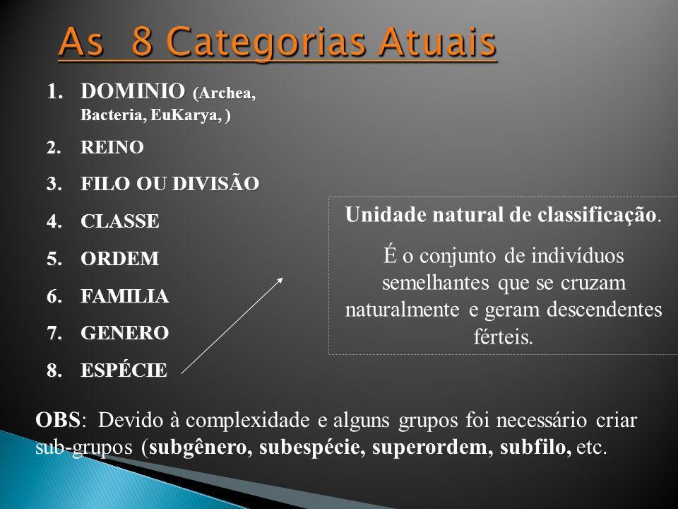 1.DOMINIO (Archea, Bacteria, EuKarya, ) 2.REINO 3.FILO OU DIVISÃO 4.CLASSE 5.ORDEM 6.FAMILIA 7.GENERO 8.ESPÉCIE Unidade natural de classificação. É o