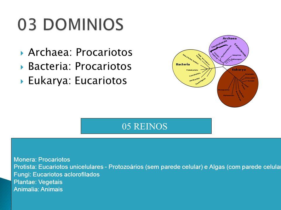 Archaea: Procariotos Bacteria: Procariotos Eukarya: Eucariotos 05 REINOS Monera: Procariotos Protista: Eucariotos unicelulares - Protozoários (sem par