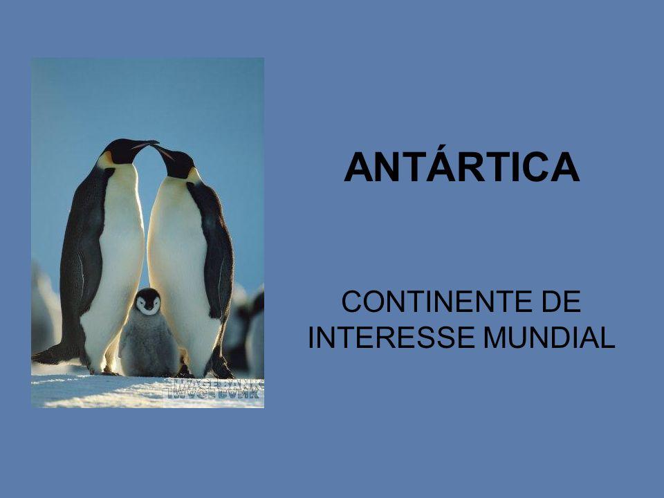 ANTÁRTICA CONTINENTE DE INTERESSE MUNDIAL