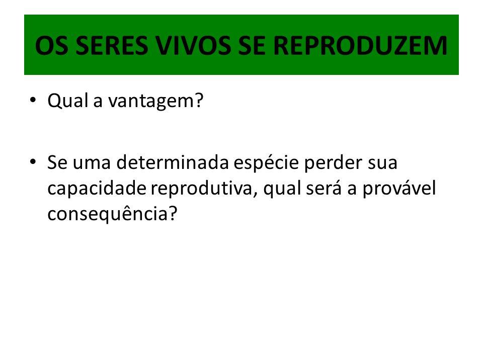 Qual a vantagem? Se uma determinada espécie perder sua capacidade reprodutiva, qual será a provável consequência?
