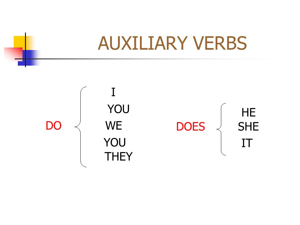 AUXILIARY VERBS I YOU DO WE YOU THEY HE DOES SHE IT