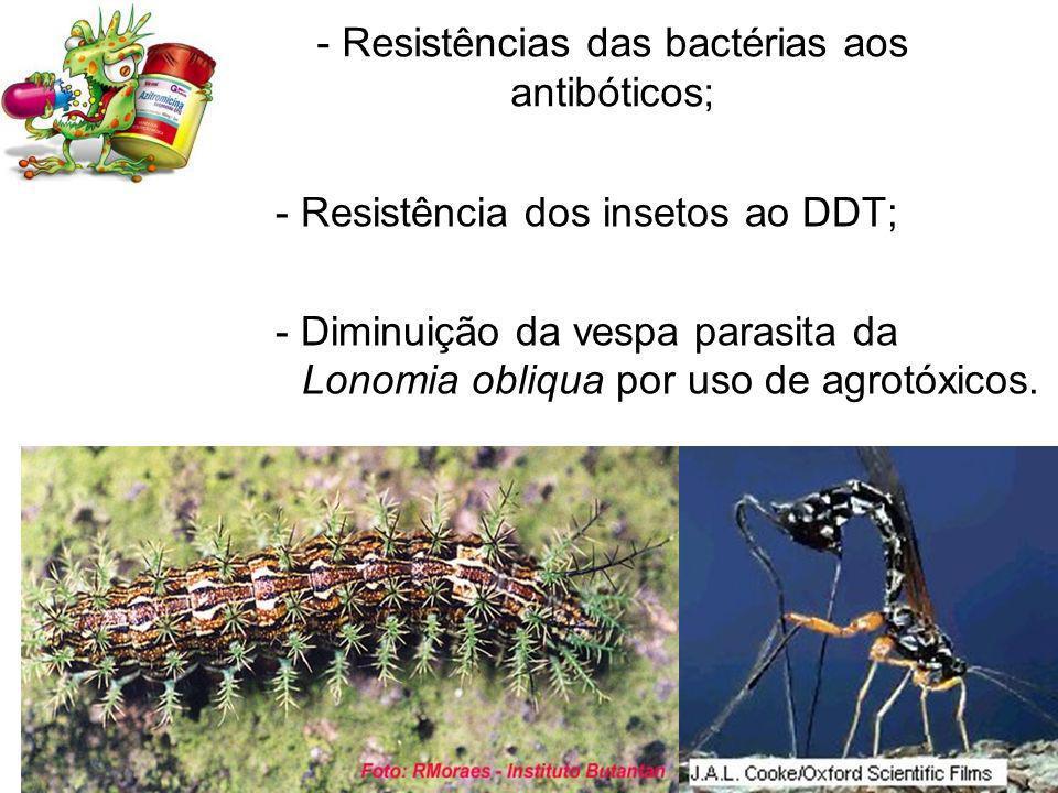 - Resistências das bactérias aos antibóticos; - Resistência dos insetos ao DDT; - Diminuição da vespa parasita da Lonomia obliqua por uso de agrotóxicos.
