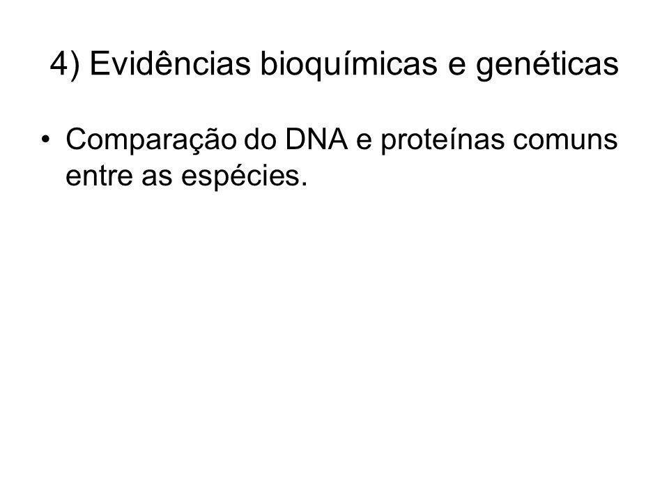 4) Evidências bioquímicas e genéticas Comparação do DNA e proteínas comuns entre as espécies.