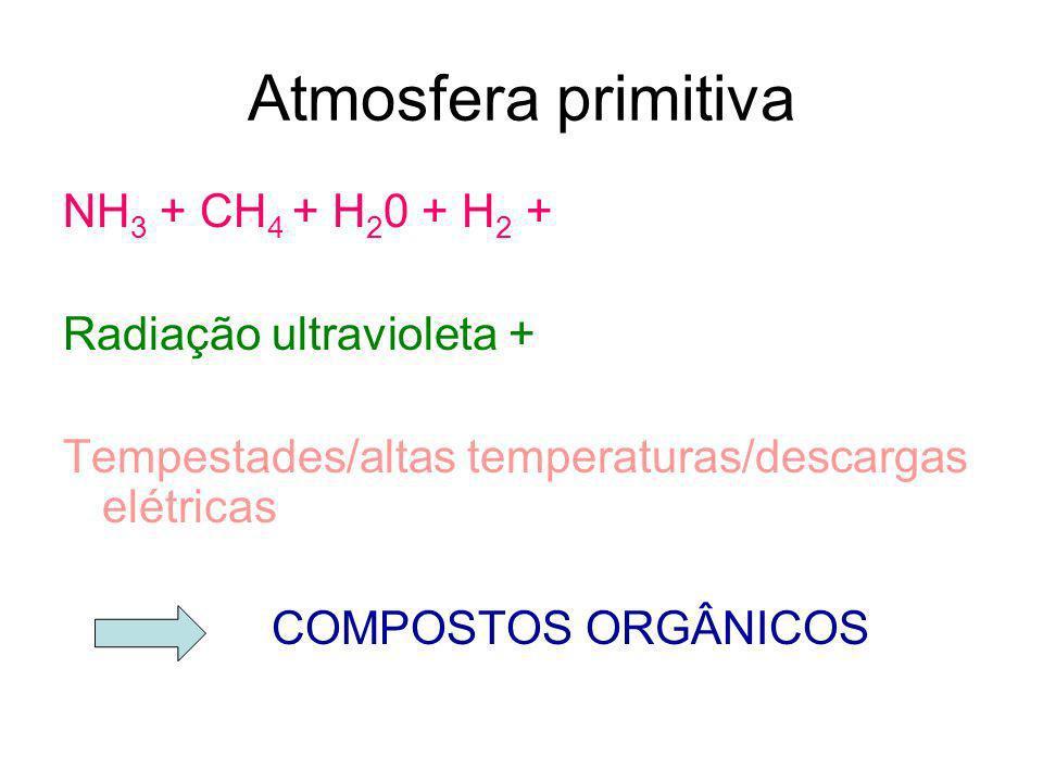 NH 3 + CH 4 + H 2 0 + H 2 + Radiação ultravioleta + Tempestades/altas temperaturas/descargas elétricas COMPOSTOS ORGÂNICOS