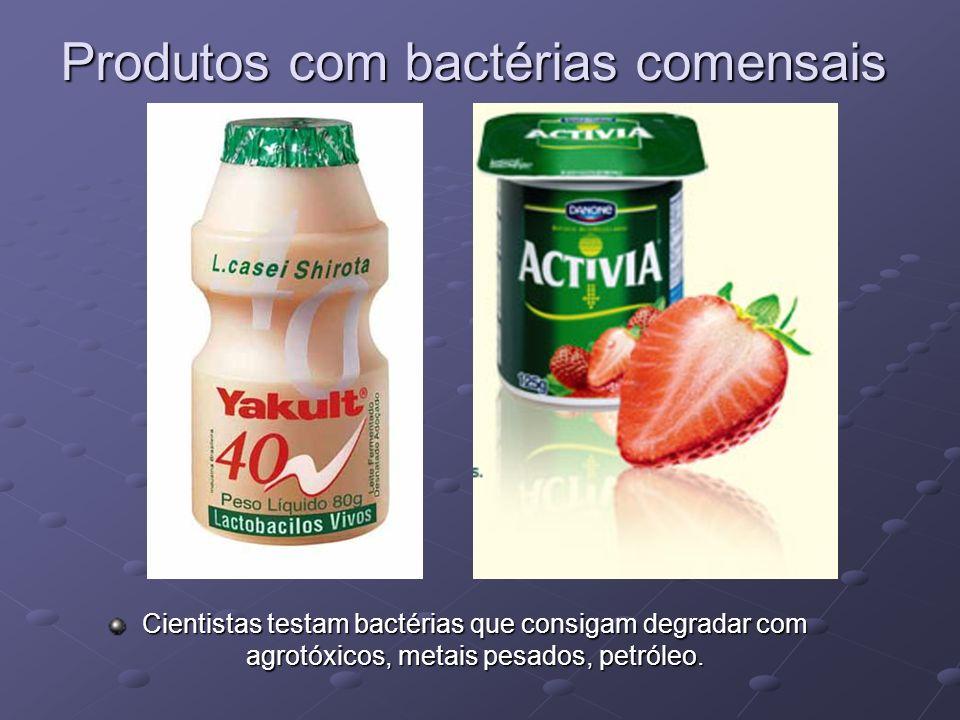 Produtos com bactérias comensais Cientistas testam bactérias que consigam degradar com agrotóxicos, metais pesados, petróleo.