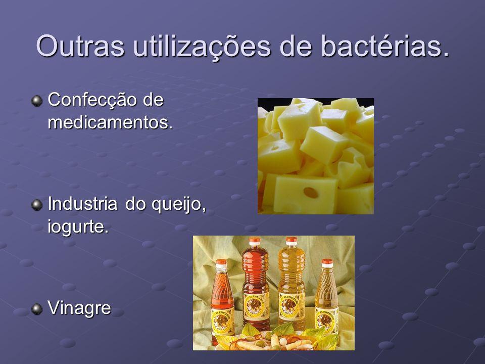 Outras utilizações de bactérias. Confecção de medicamentos. Industria do queijo, iogurte. Vinagre