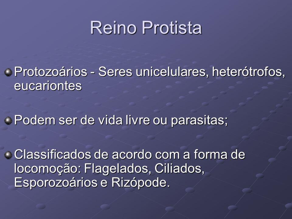 Reino Protista Protozoários - Seres unicelulares, heterótrofos, eucariontes Podem ser de vida livre ou parasitas; Classificados de acordo com a forma de locomoção: Flagelados, Ciliados, Esporozoários e Rizópode.