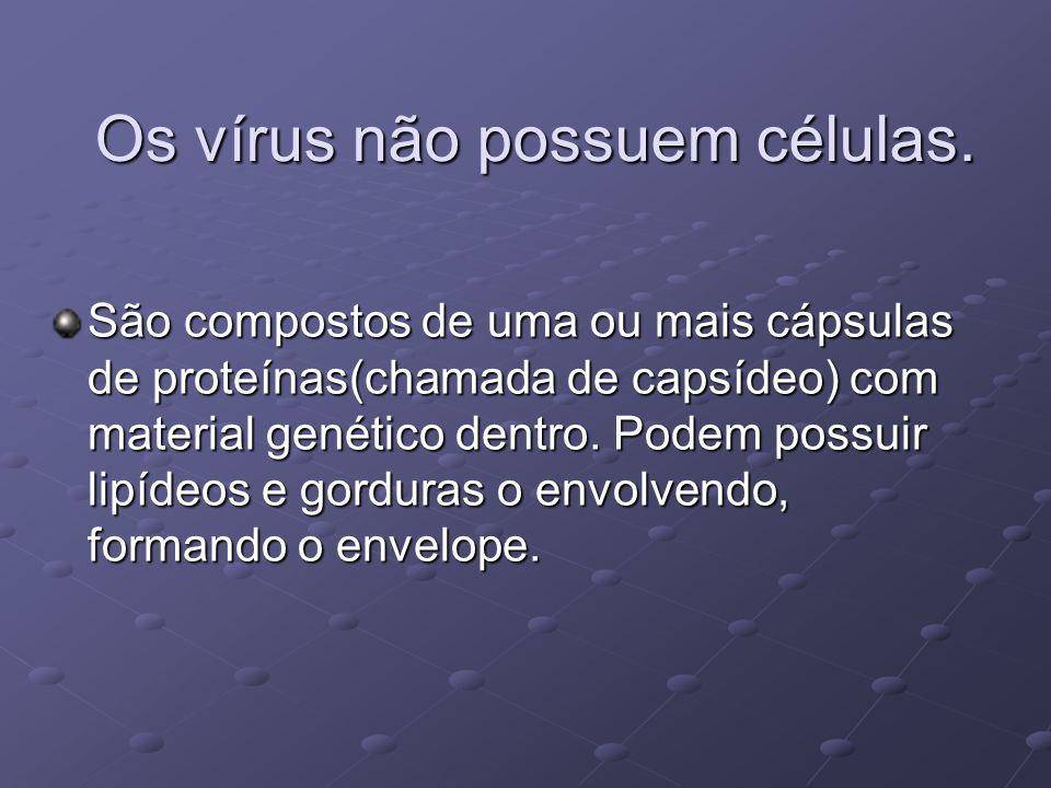 Os vírus não possuem células. São compostos de uma ou mais cápsulas de proteínas(chamada de capsídeo) com material genético dentro. Podem possuir lipí