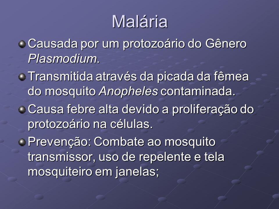 Malária Causada por um protozoário do Gênero Plasmodium. Transmitida através da picada da fêmea do mosquito Anopheles contaminada. Causa febre alta de