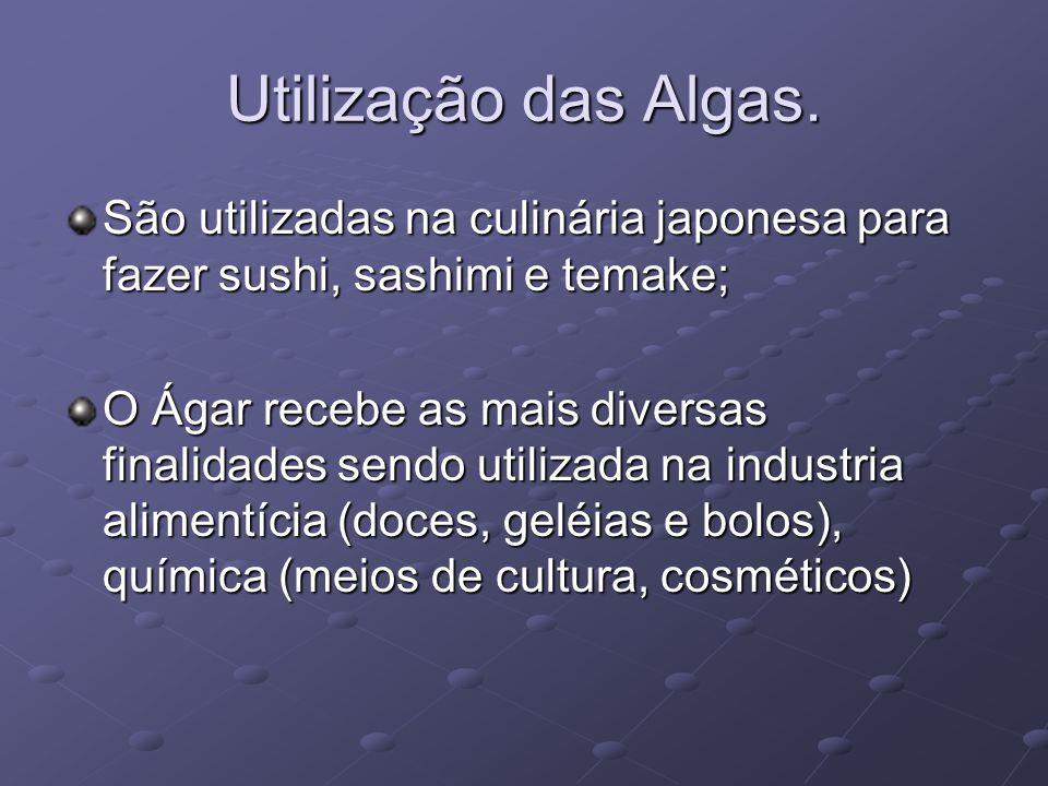 Utilização das Algas. São utilizadas na culinária japonesa para fazer sushi, sashimi e temake; O Ágar recebe as mais diversas finalidades sendo utiliz
