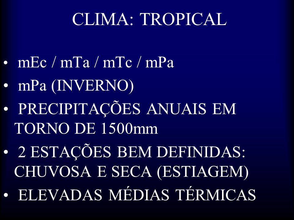 CLIMA: TROPICAL mEc / mTa / mTc / mPa mPa (INVERNO) PRECIPITAÇÕES ANUAIS EM TORNO DE 1500mm 2 ESTAÇÕES BEM DEFINIDAS: CHUVOSA E SECA (ESTIAGEM) ELEVAD