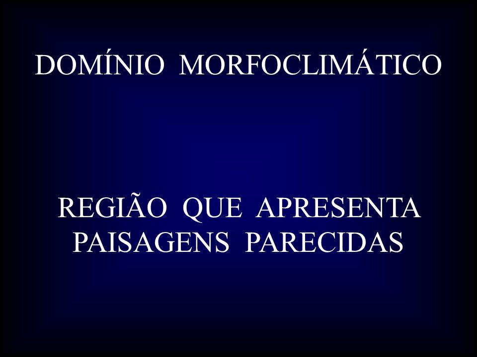 DOMÍNIO MORFOCLIMÁTICO REGIÃO QUE APRESENTA PAISAGENS PARECIDAS
