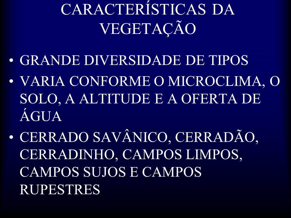 CARACTERÍSTICAS DA VEGETAÇÃO GRANDE DIVERSIDADE DE TIPOS VARIA CONFORME O MICROCLIMA, O SOLO, A ALTITUDE E A OFERTA DE ÁGUA CERRADO SAVÂNICO, CERRADÃO