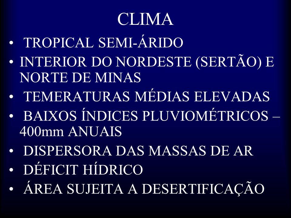 CLIMA TROPICAL SEMI-ÁRIDO INTERIOR DO NORDESTE (SERTÃO) E NORTE DE MINAS TEMERATURAS MÉDIAS ELEVADAS BAIXOS ÍNDICES PLUVIOMÉTRICOS – 400mm ANUAIS DISP