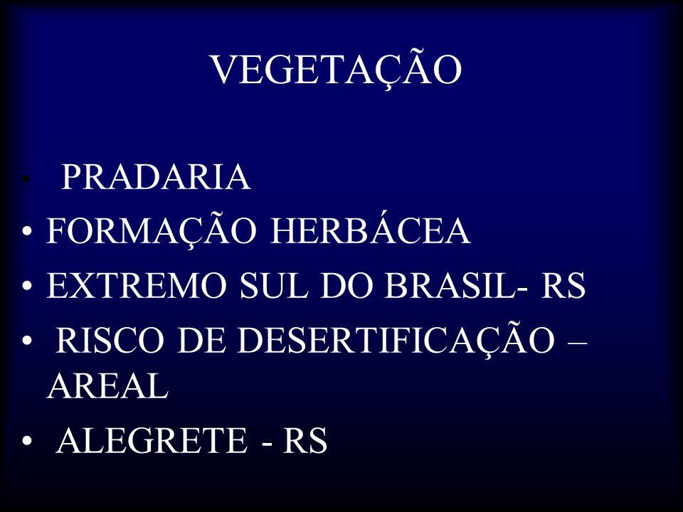 VEGETAÇÃO PRADARIA FORMAÇÃO HERBÁCEA EXTREMO SUL DO BRASIL- RS RISCO DE DESERTIFICAÇÃO – AREAL ALEGRETE - RS