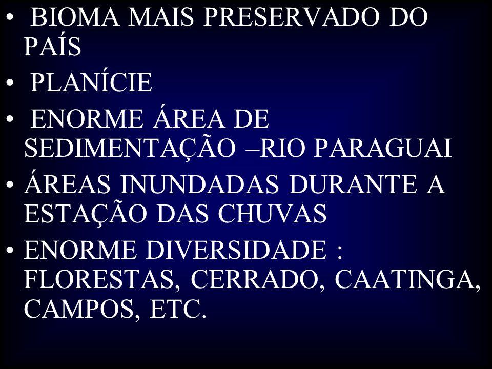 BIOMA MAIS PRESERVADO DO PAÍS PLANÍCIE ENORME ÁREA DE SEDIMENTAÇÃO –RIO PARAGUAI ÁREAS INUNDADAS DURANTE A ESTAÇÃO DAS CHUVAS ENORME DIVERSIDADE : FLO