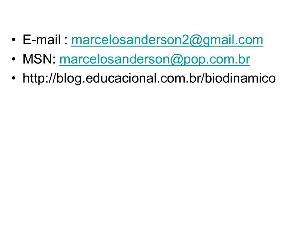 E-mail : marcelosanderson2@gmail.commarcelosanderson2@gmail.com MSN: marcelosanderson@pop.com.brmarcelosanderson@pop.com.br http://blog.educacional.co