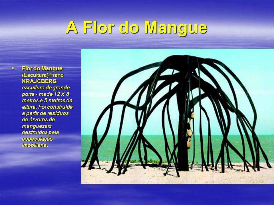 A Flor do Mangue Flor do Mangue (Escultura) Franz KRAJCBERG escultura de grande porte - mede 12 X 8 metros e 5 metros de altura. Foi construída a part