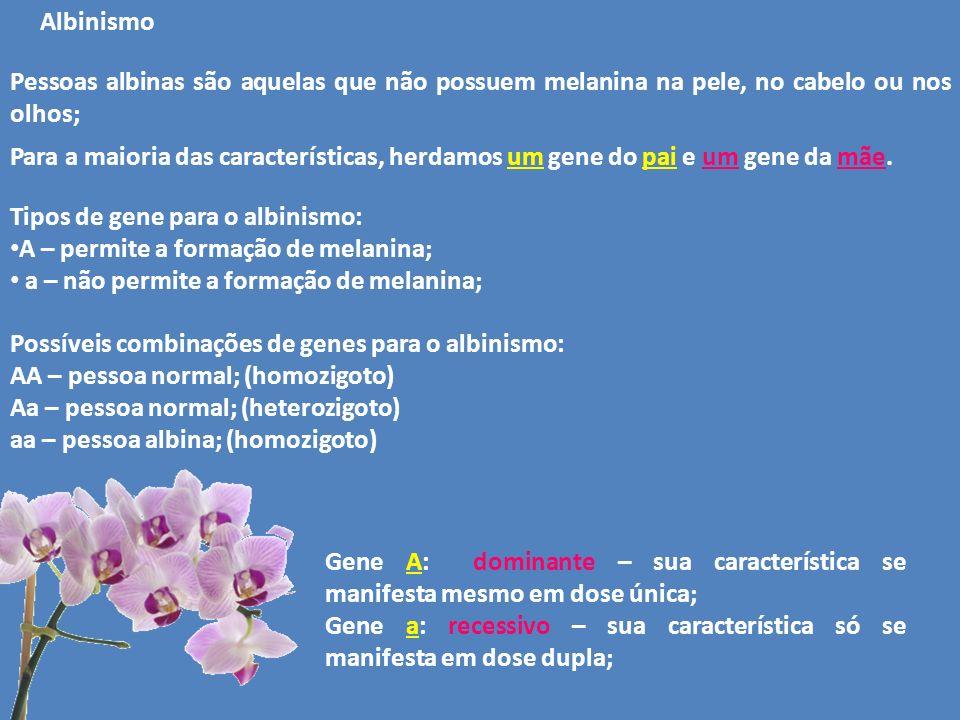 Albinismo Para a maioria das características, herdamos um gene do pai e um gene da mãe. Tipos de gene para o albinismo: A – permite a formação de mela